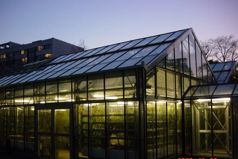 Botanischer-Garten-Sanierung-Gewächshäuser 3